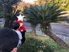 やってきました!福島のハワイ。  子供①「この木からバナナ生えるんだぞ」  子供②「違うよ、パイナップルだよ」  ・・・どちらも生えないだろうな(°▽°)駐車場から少しハワイ気分にさせてくれた。