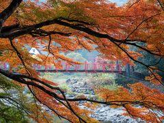 巴川沿に奥の方へ進みます。香嵐橋付近は日が差すと輝きそうな色づきです