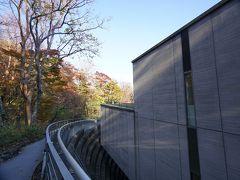 美術館の外に出て 森の遊歩道「風の遊ぶ散歩道」を散策します。