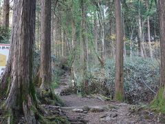 公時神社の横から、1時間ほどの金時山 登山ルートになっています。ここに来るまではすっかり忘れていましたが、確か中学生の時に遠足で歩いた記憶が・・・