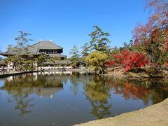 東大寺の鏡池。 少し紅葉もあり綺麗(*´ `*)このビューお気入りです。