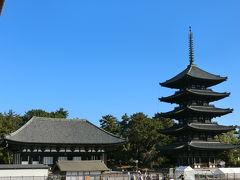東金堂と五重塔です。 五重塔は藤原一族の光明皇后が建立、東金堂は聖武天皇が建立したそうですが、どちらも火災等の消失で創建当初のものではないそうです。