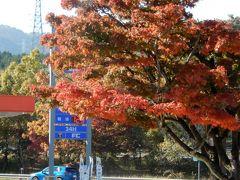 常磐道中郷SAで昼食 SAの紅葉と黄色のバイク、いいですねー。
