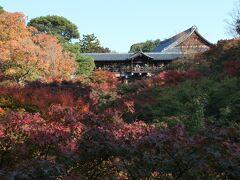 東福寺 臥雲橋から通天橋 紅葉は期待してなかったので充分きれいでした。