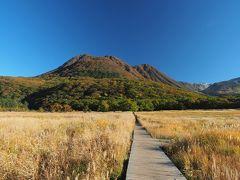 振り返ると、出発時には雲に隠れて見えなかった三俣山の堂々とした姿が。5時間前にあの頂を歩いていたとは信じられません。
