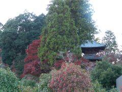 おおっ! 三重塔がちらっと見えていますね。 「常楽寺」は通称/西寺と呼ばれています。ちなみに、先ほど訪れた「長寿寺」は東寺と呼ばれています。