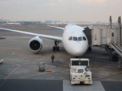 JL103便は7月同様にB787です。 最新鋭機はいいね。