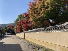 清凉寺の塀。すでに美しい。