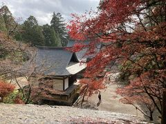 2日目。京都駅10時発のバスで50分、高雄へ。神護寺は少し盛りを過ぎてました。