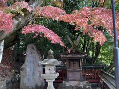 春日大社→浮見堂→天神社→奈良ホテルの裏道がお気に入り。奈良ホテル少し手前のこの小さな神社も紅葉がきれいでした。