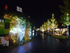 ぺちゃくちゃおしゃべりして、おなかも満腹になりました。 外ではクリスマスのイルミネーションが始まっています。 私「そろそろ、クリスマスリース飾らなあかん。」 友人D子「ほんまや!クリスマスツリーださな!」 私「楽しかった!またね!」 友人D子「私も楽しかった!またね!」  私は、この後JR大阪駅まで戻って 大丸梅田店でアテニアのクリスマスコフレを買いました。  これから、大阪は年末にかけて色々なライトアップや、 イルミネーションイベントがあります。 大阪光の饗宴2020 https://www.hikari-kyoen.com/  自粛をしながらもなんとか生活を楽しみたいと思います。 おしまい!