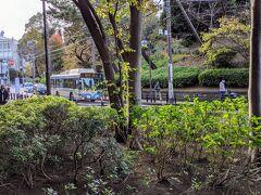 動物園前に行くバス。 坂が苦手な方は、桜木町駅から市営バスで行けます!