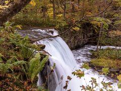 行ったことある人なら見ればすぐわかると思いますが「銚子大滝」です。正午少し前に着きました。 十和田湖の子ノ口から奥入瀬渓流ホテルあたりまでの約14kmがいわゆる奥入瀬渓流。そのいちばん十和田湖寄り(上流)にある有名な滝です。 駐車場もあるのでまずここに停め、歩いて行くことにしました。