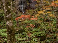 奥に見えるのは繊細な「不老の滝」。