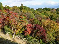 びわ湖バレイ~比叡山ドライブウェイ 1時間10分位移動し比叡山ドライブウェイの駐車場へ。 若干紅葉始まっています。