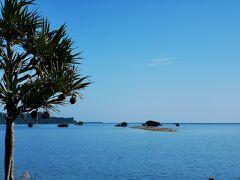先週の納沙布岬が嘘のような南国。 日本って素敵。