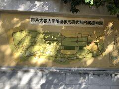植物園といっても東大の研究施設です。 元々は江戸幕府の小石川養生所が設けられていたところでもあります。