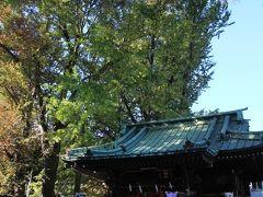 上目黒天祖神社の境内は広くはありませんが、結構銀杏が落ちていました。