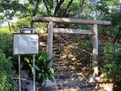 旧朝倉家住宅の裏側にある猿楽塚 旧朝倉家住宅の庭園から猿楽塚に出られるようにもなっています。