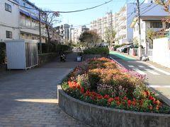 烏山川緑道を歩いて豪徳寺へ向かいます