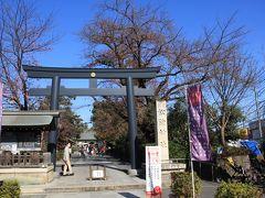 烏山川緑道から離れて松陰神社へ。