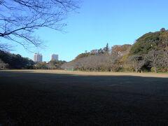 上座公園、春の桜が見どころ。