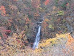 見れたー!  紅葉の中、とても素敵な光景です。来た甲斐ありました!