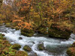 昨日は十和田湖よりの上流エリアを歩きましたので、この日は下流・中流エリアを歩こうと思います。石ヶ戸周辺、阿修羅の流れ、雲井の滝、それぞれのポイントで車を停めながら巡りました。 最初に石ヶ戸から三乱の流れへ向かいました。 とても奥入瀬らしい景色。流れの中の岩々に苔が生え草が育ち、その上繁った木々が紅葉していい感じです。 (もしかすると勘違いで九十九島のあたりかもしれません)