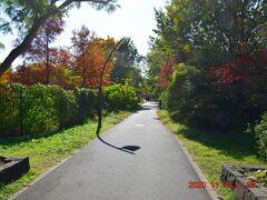 そして埼玉県三郷市へ・・・ 雰囲気的には水元公園と似た雰囲気の緑道が続いていました。