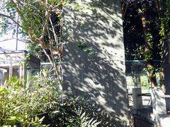 旧大泉村役場跡 大正11年に木造2階建ての村役場がここに建設されました。 村から板橋区を経て練馬区になった後も公共施設としていろいろ利用されましたが 昭和54年に建物は取り壊されました。