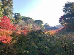 ホテルから3~40分くらい歩いて東福寺へ。