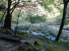 大聖寺川沿いを歩きます。