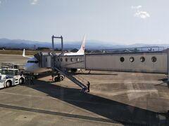 この飛行機で帰ります。