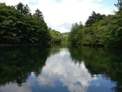 旧軽から少し距離がありましたが、自転車で雲場池へ。ほんとに美しいです。緑もいいけど、紅葉の季節に来たかったなぁ。