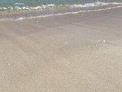 ニシ浜。サンゴのかけらでできた浜なので白いです。