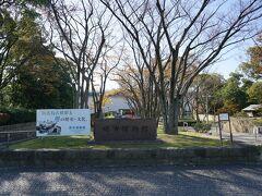 堺市博物館へ。