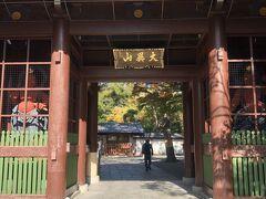 高徳院(鎌倉大仏)  食事の後、かなりの距離を歩き高徳院まで行きました。途中素敵な鎌倉の街並みを堪能し、長距離も苦も無く歩けました。