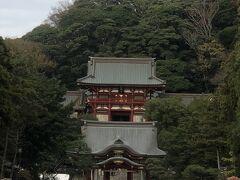 鶴岡八幡宮  御鎮座800年余り。鎌倉と共に歩んできた場所。鶴岡八幡宮にようやく到着。