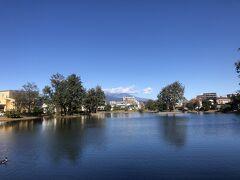 中郷温水池。