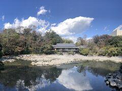 楽寿園小浜池。