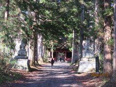 参道のほぼ中間点にある随神門。2匹の立派な狛犬に守られています。