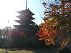 成相寺も五重塔や池など見どころがいくつかあった。入り口の山門も立派に造られているので、バス待ちの時間などに見学をおすすめします。
