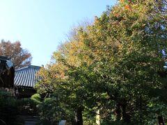 山手七福神の一つである蟠竜寺 本堂