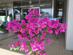 成田から約2時間のフライトで宮崎ブーゲンビリア空港に到着。空港の名前のとおりブーゲンビリアが咲き誇っています。