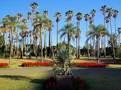 青島亜熱帯植物園へ。ネーミングライツ制度により、今は「宮交ボタニックガーデン」と呼ばれています。