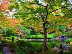 庭園は、庭園美術館って名前の通り、みごと。