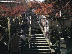 次は大聖院へ。 一直線の石段を登っていきます。