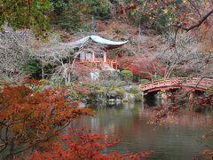観音堂の前の池と弁天堂。 池と紅葉のコントラストが美しかったです。