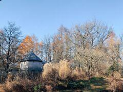 お腹がいっぱいになったので、散歩をしにムーぜの森のピクチャレスガーデンへ 紅葉はほとんど終わってしまってましたが、軽井沢の原風景を思い出させてくれるランドスケープになっています
