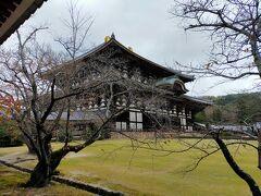 さて観光スタート。 やっぱり初めは東大寺でしょう!